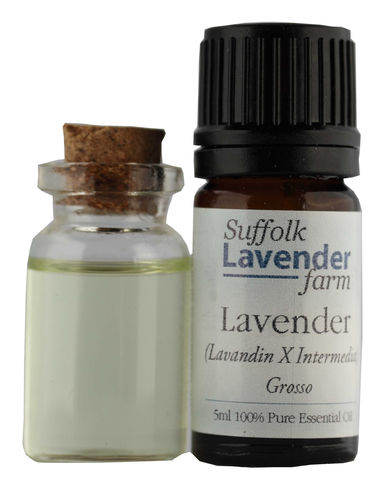Lavender (Grosso) 100% Pure Essential Oil