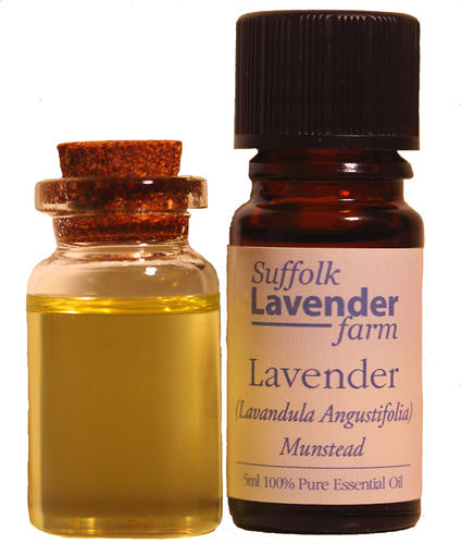 Lavender (Munstead) 100% Pure Essential Oil